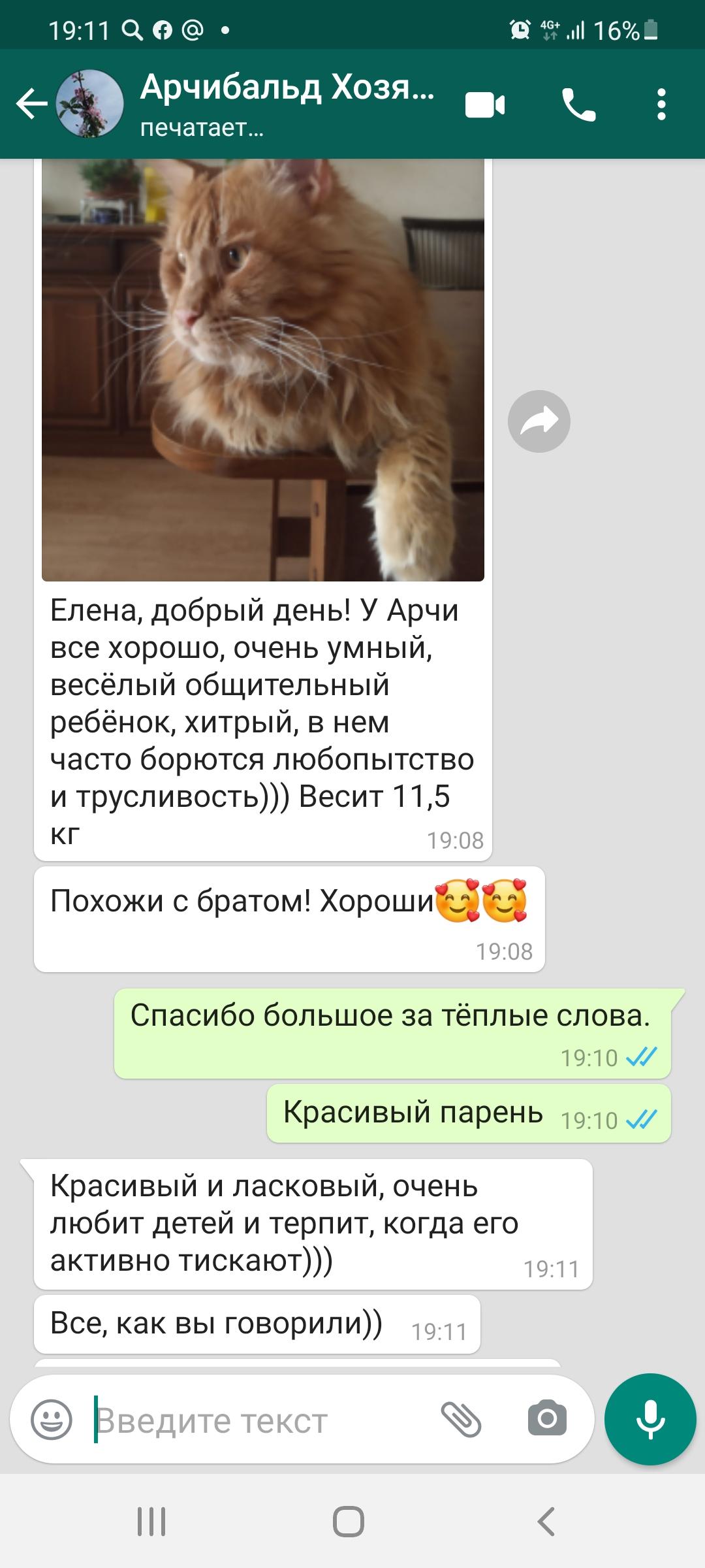 Screenshot_20210528-191154_WhatsApp