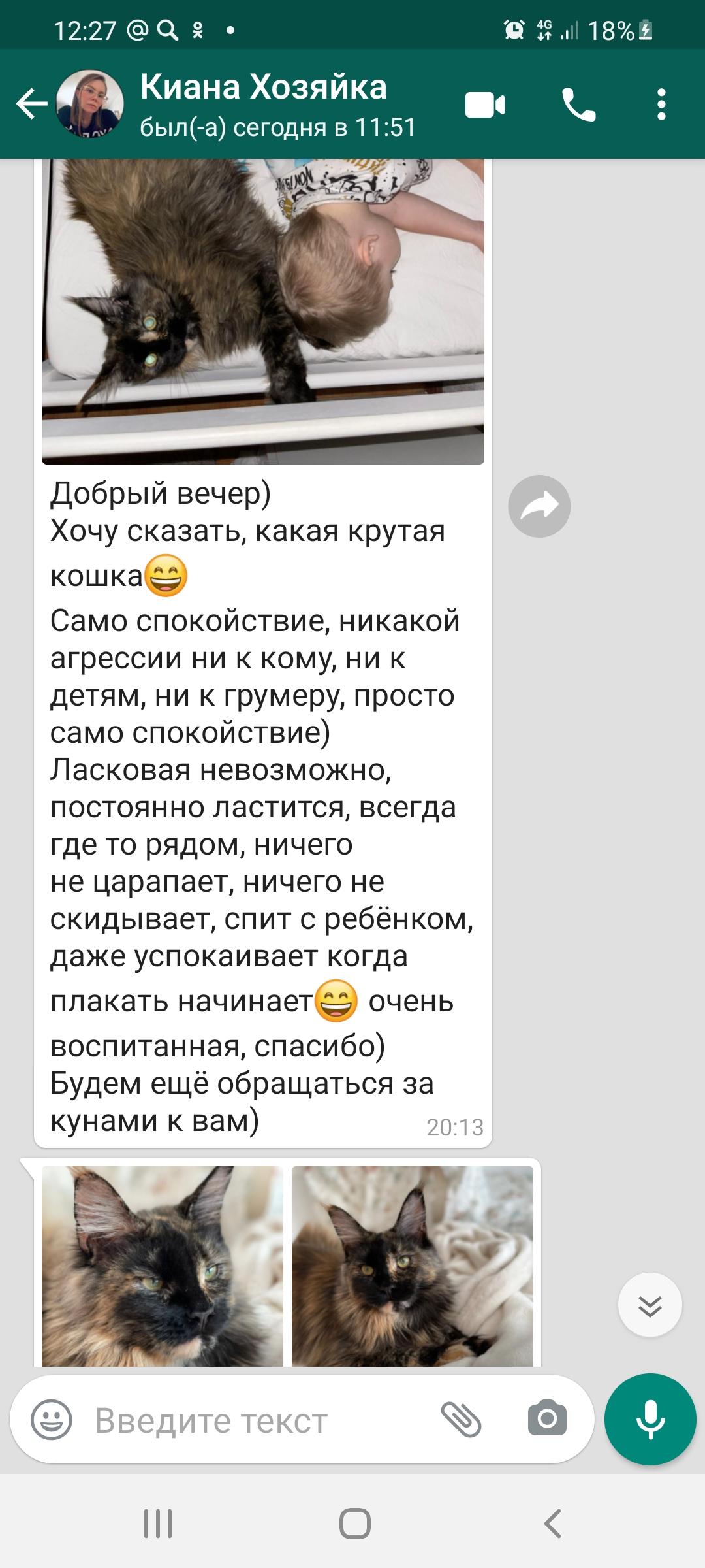 Screenshot_20210610-122709_WhatsApp