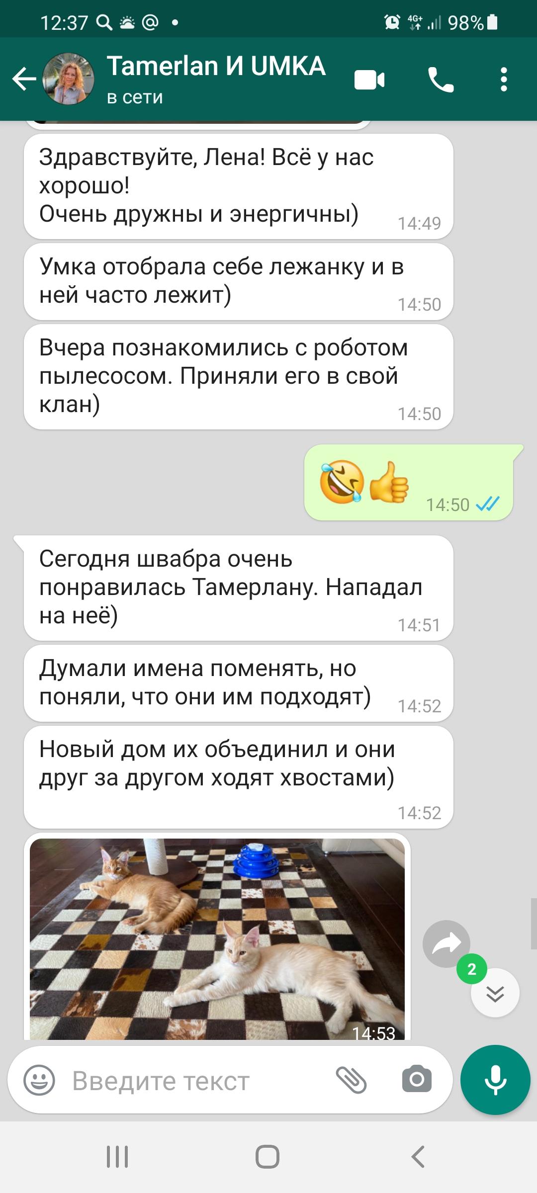 Screenshot_20210810-123735_WhatsApp
